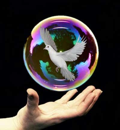 magic-servicios